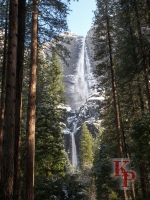 Yosemite Falls, April, Falls after Snow, in the Sunshine